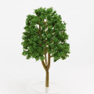 Model Tree suit Eucalyptus - 9cm Image 1
