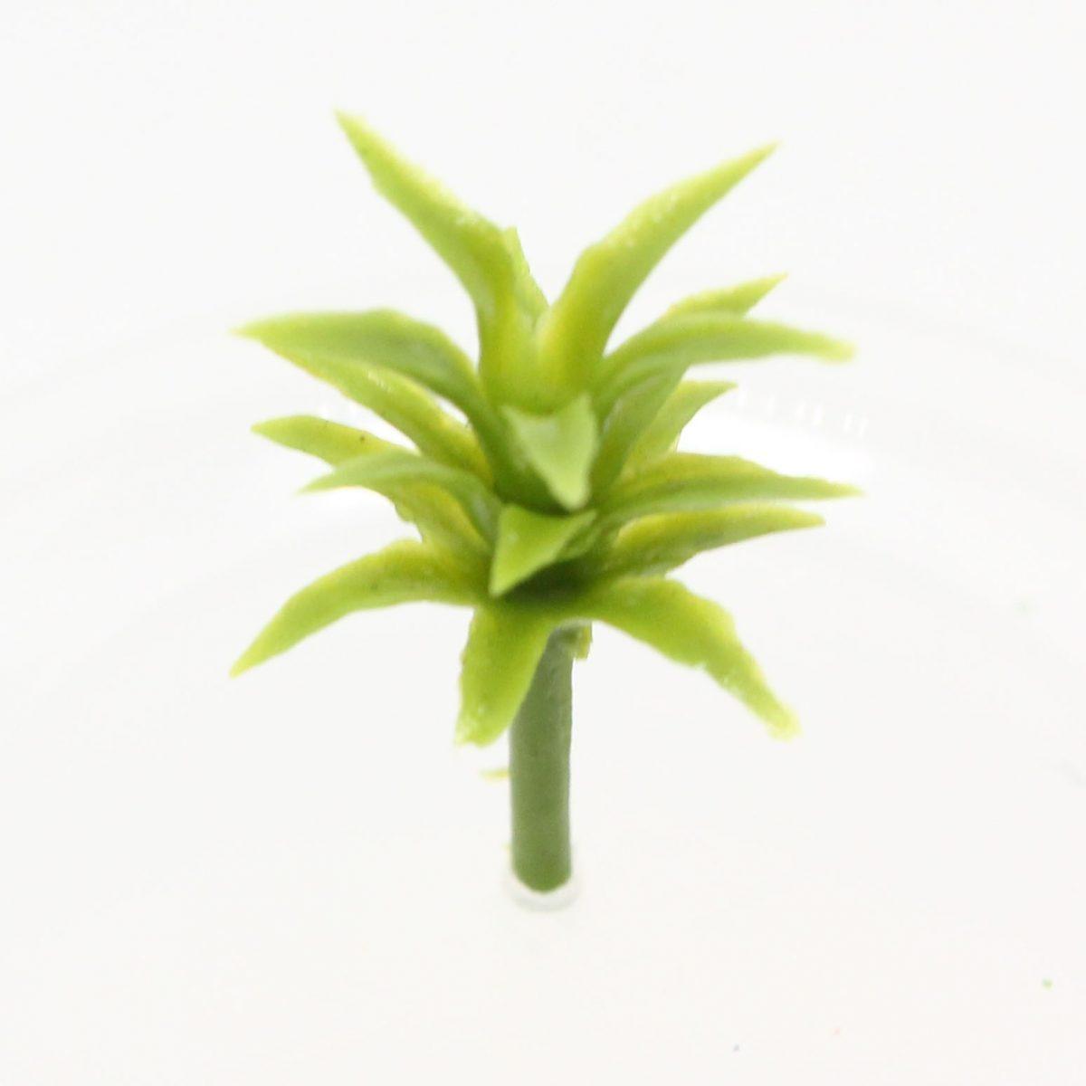 Model plant suit succulents, flax etc - 2cm Image 1